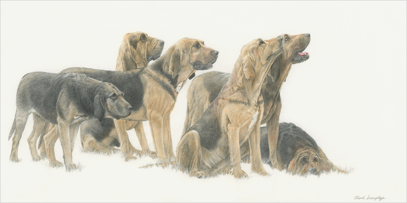 'Waiting for the Off' - Original graphite and colour pencil drawing by Mark Langley Fine Artist - 48 x 24 cm. Please enquire.