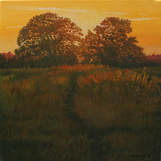 'Hazelwood Sunset Trees' - 2018 Original Oil on Canvas by Mark Langley Fine Artist - 30 x 30 cm