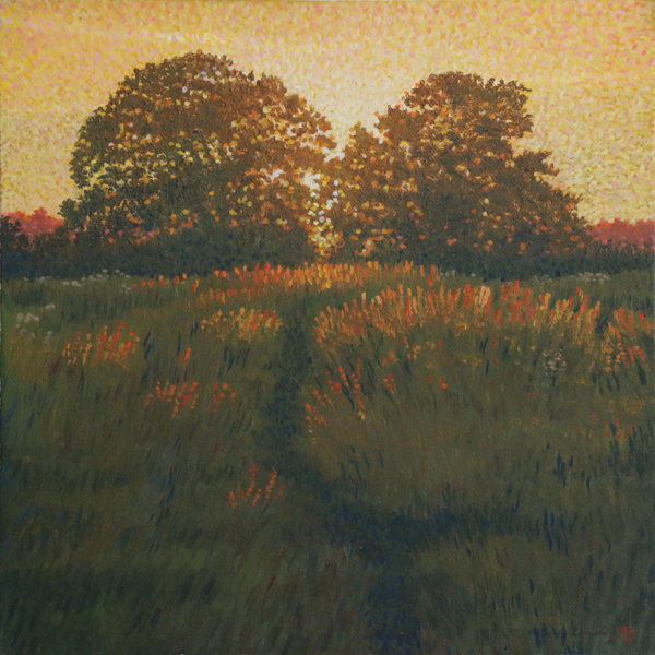 'Setting Light on Barley' - Oil on canvas not framed by Mark Langley Fine Artist - 30 x 30 cm, 1.5 cm shallow canvas edge. Please enquire.